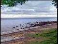 An impressive shot of iligan Dalipuga Centennial Park