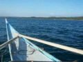 Wiesl Jr Tours Philippines - Donsol boat ride walesharks