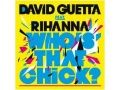 Rihanna & David Guetta - Whos That Chick (2010)